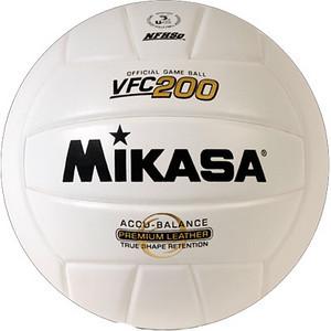 2010 - UMAC Volleyball Championship