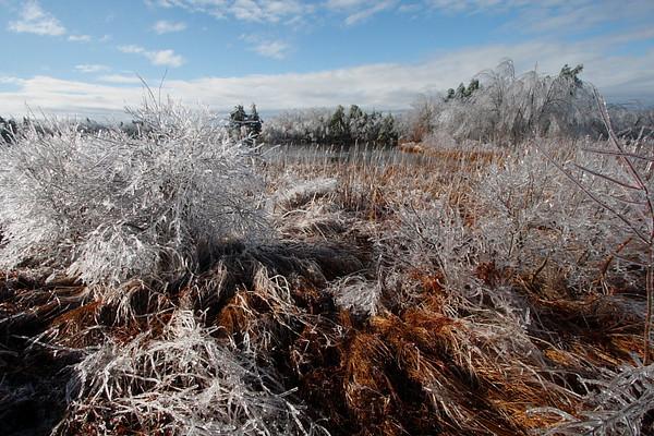 Ice Storm - December, 2008