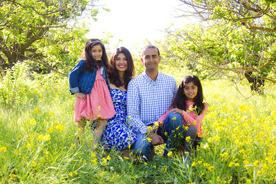 The Patel Family Mini-Session