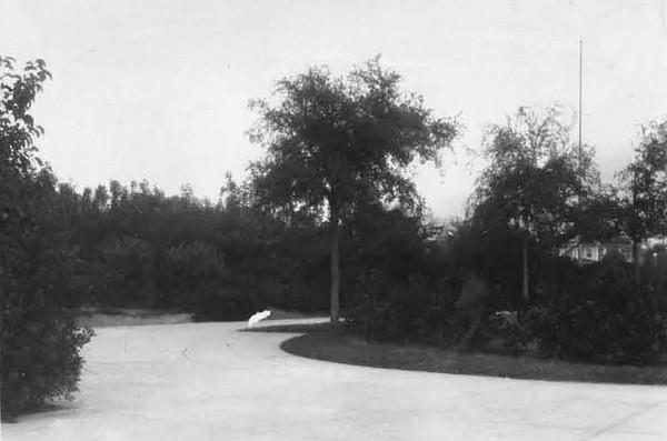1928-Memorial Park - Riverside.jpg