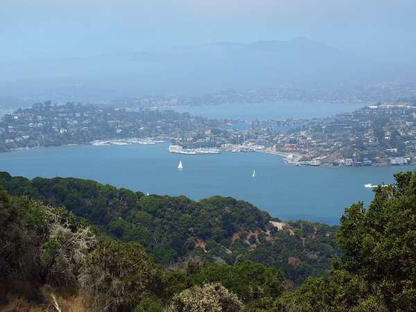 View from top of Angel Island