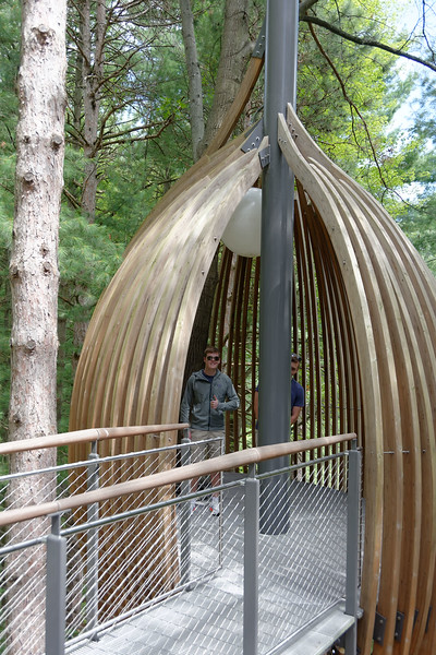 Dow Gardens - Whiting Forest Canopy Walk (6).jpg