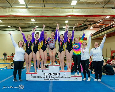 HS Sports - Gymnastics - Div 2 Sectionals [d] Feb 22, 2019