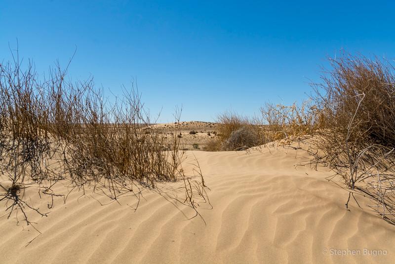 desert view from Pandie Pandie, South Australia