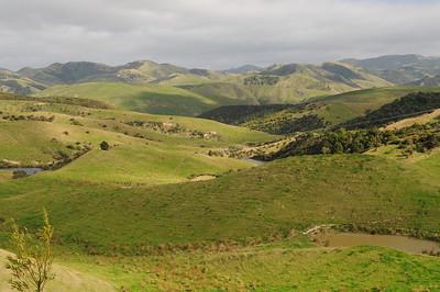 NZ - Martinborough to Napier