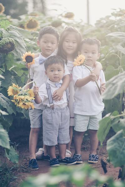 2019_07_14 Sunflower Farm-8155.jpg