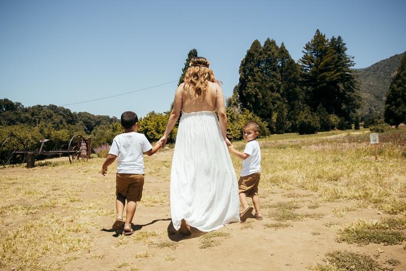 6-4-17 Bristina - Mommy & The Boys-9119.jpg