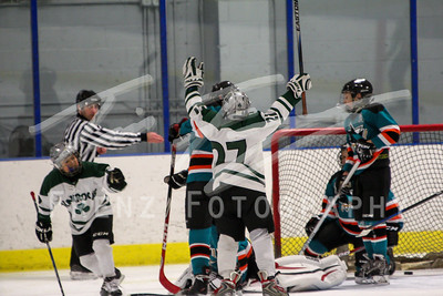 Gm 060 Sun 1140am NHL1 Peewee Shamrocks Sharks