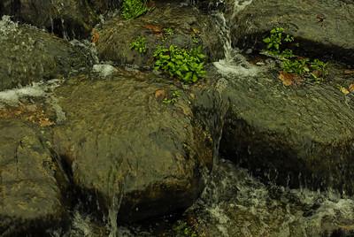 Waterloo Millennium Gardens - Water Feature