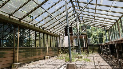 African Greenhouse