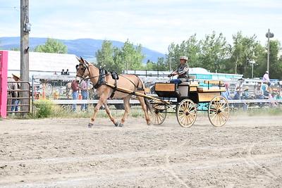 Mule & Horse Street Class