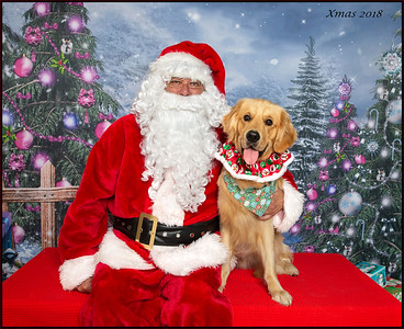 Santa Photos - Best Friends Browns Plains