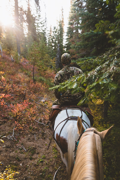 Austin Heinrich (no IG) riding into elk country on a crisp morning in Idaho's backcountry. September 2018, Archery hunting Elk
