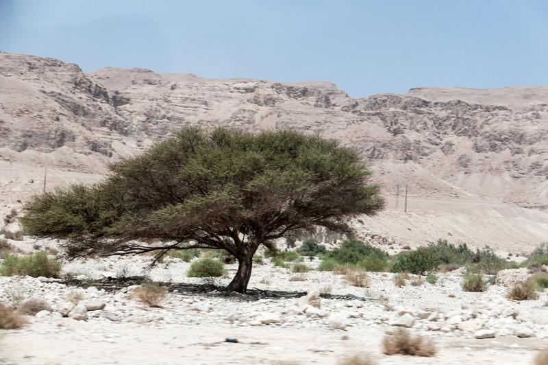 Israel_1057.jpg