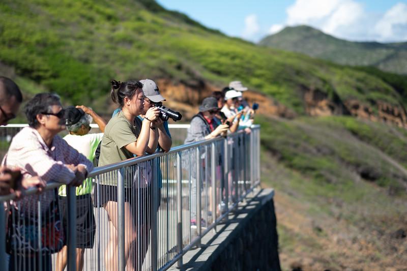 Hawaii-KAYO-145.jpg
