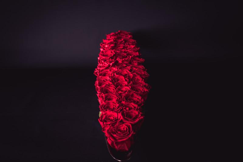 Rose Inspired (3rd Day)--18.jpg