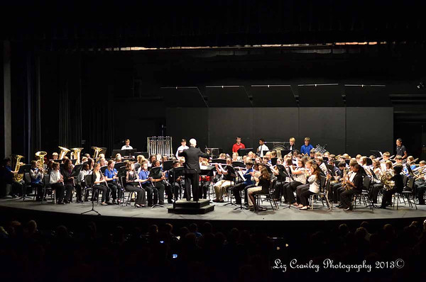 2.2.13 Limestone Honor Band Clinic Middle School (Concert)