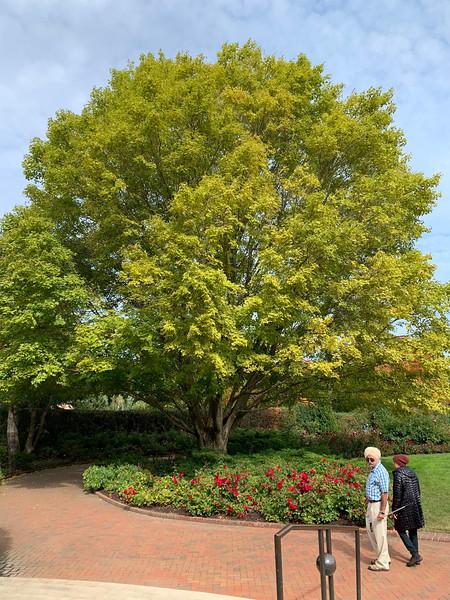 Chicago Botanic Garden 119.jpg
