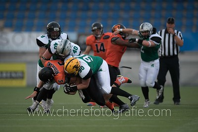 Dutch Lions vs Ireland
