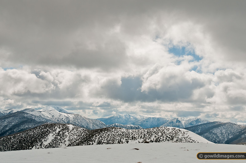 Looking across The Razorback to Mt Feathertop (L) and Mt Bogong (M) – Victoria's highest peak.