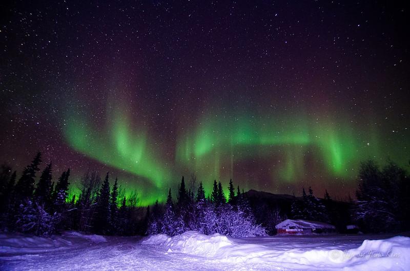 USA-Alaska-Wiseman-Aurora-2838.jpg