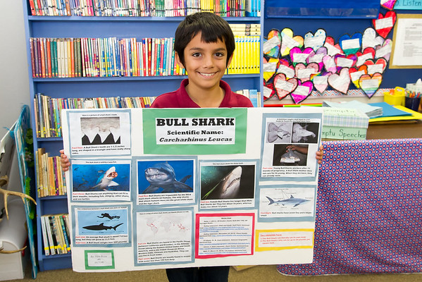4th Grade - Posters, Oct. 19, 2016