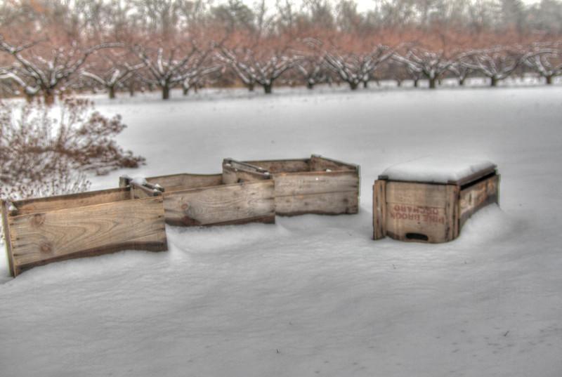 Easy Pickins Winter 027-1676781339-O.jpg