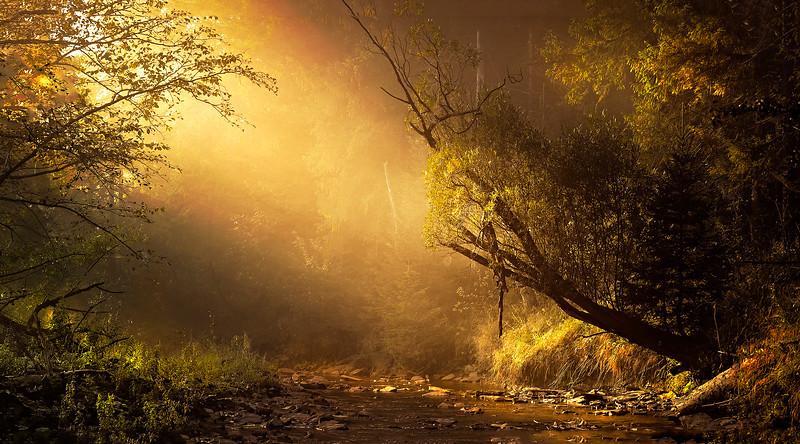 The Magic of Light-284.jpg