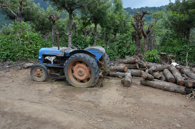 Luky's dad's tractor on Finca la Folie
