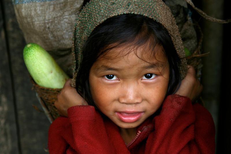 Mon, Nagaland, Indija. © Igor Osvald, 2007 - Velikansko kumaro sva odkupila in ji nekoliko olajšala jutranjo pot do tržnice.