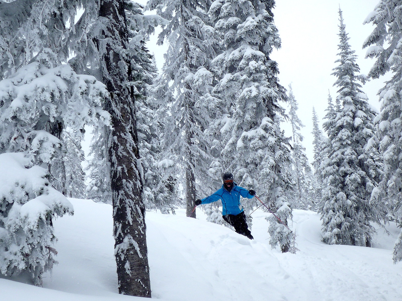 Carolyn practicing skiing through the trees on Thursday.  I keep telling her not to look at the trees, but the spaces between the trees.