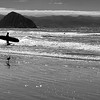 California Central Coast _ bw