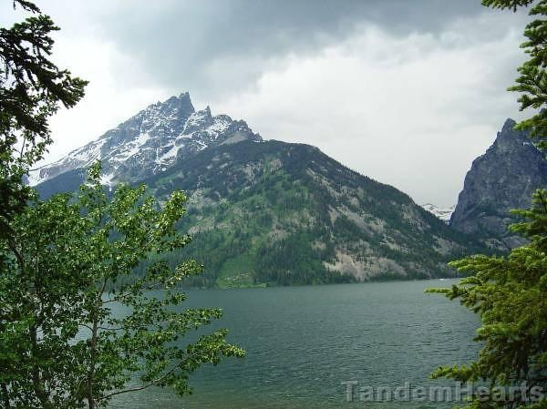 Looking across Jenny Lake.