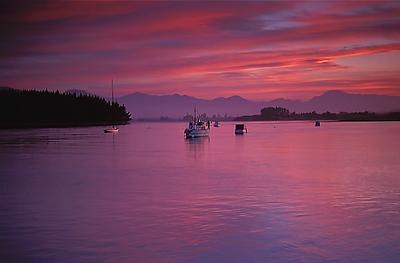 New Zealand January 2003