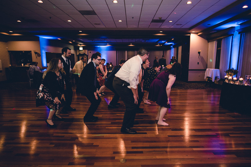 Chicago Wedding Engagement Photographer 2048.jpg