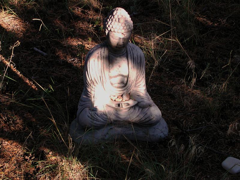 meditationretreat34.JPG
