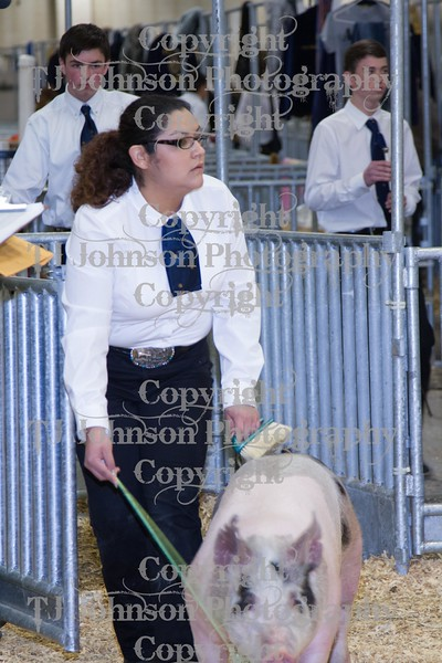 2014 KISD Livestock Show Showmanship Candids