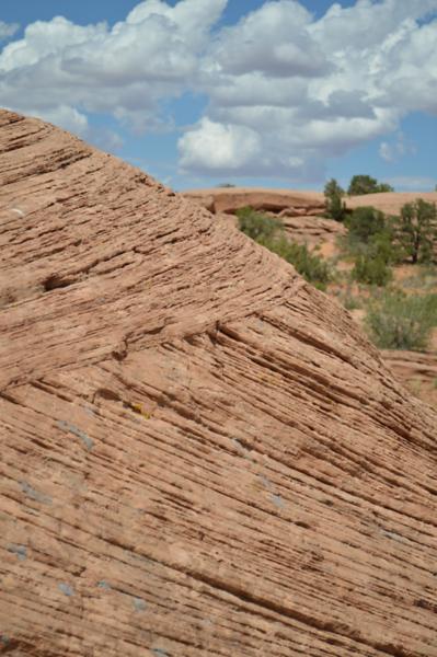 Fossil-Sand-dune-close-up-moab-slickrock.png