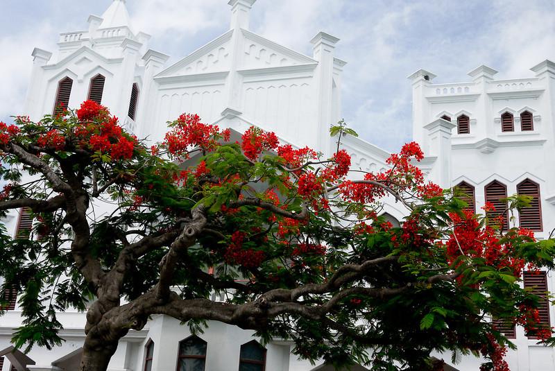 Key West Sightseeing-20.jpg
