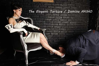 The Elegant Torture / AKIHO