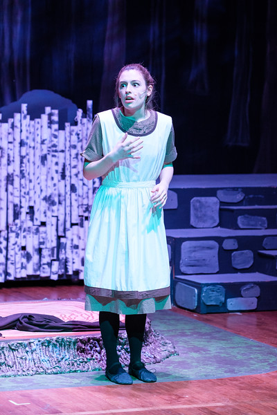 2018-03 Into the Woods Performance 0805.jpg