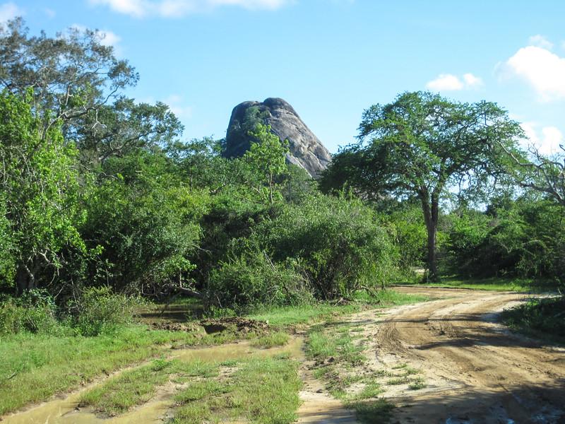 Sri_Lanka17-9871.jpg