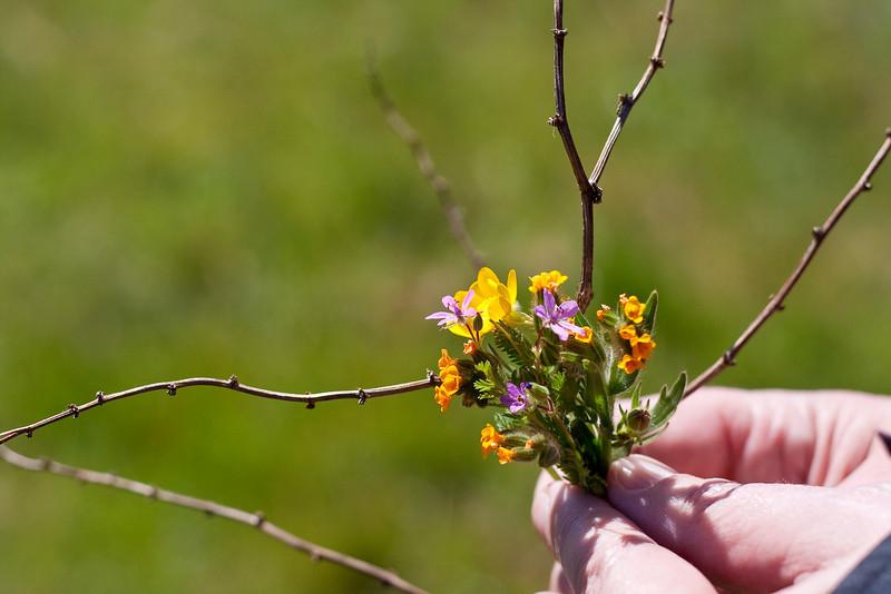 3861 Wildflower Boquet.jpg