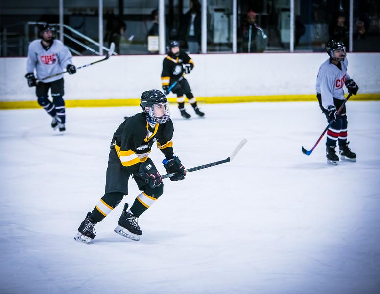 Bruins2-472.jpg