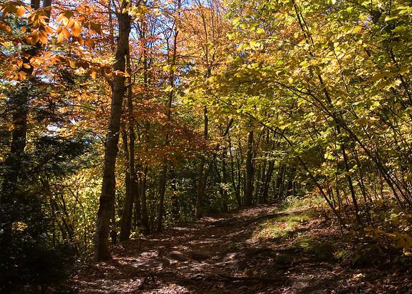 Mt. Wachusett, October 2006.
