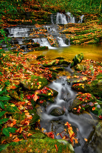 GREAT SMOKIES-RHODODENDRON CREEK-0131-Edit-2.jpg