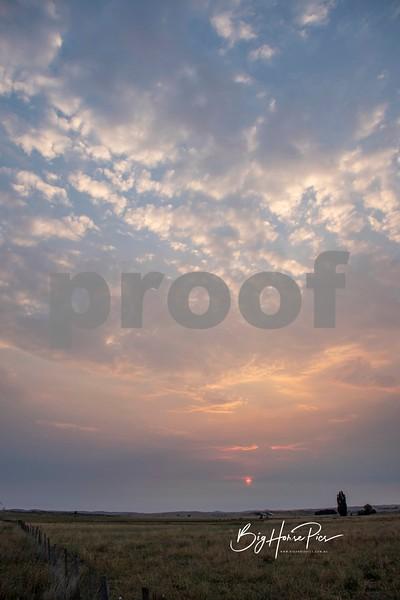 airport sunrise f march 3 2019-1.jpg