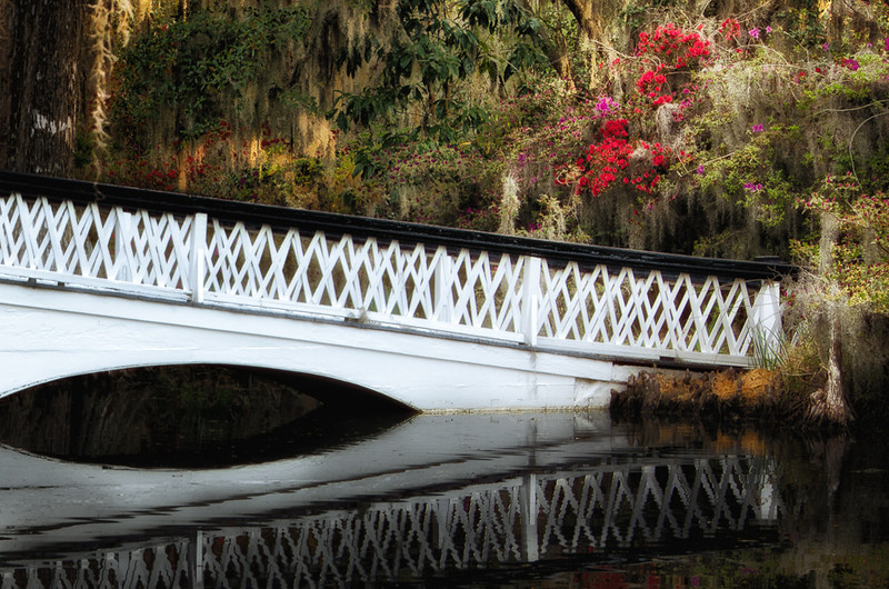 There are many beautiful bridges with reflections if you are in the Gardens at the right time of day.
