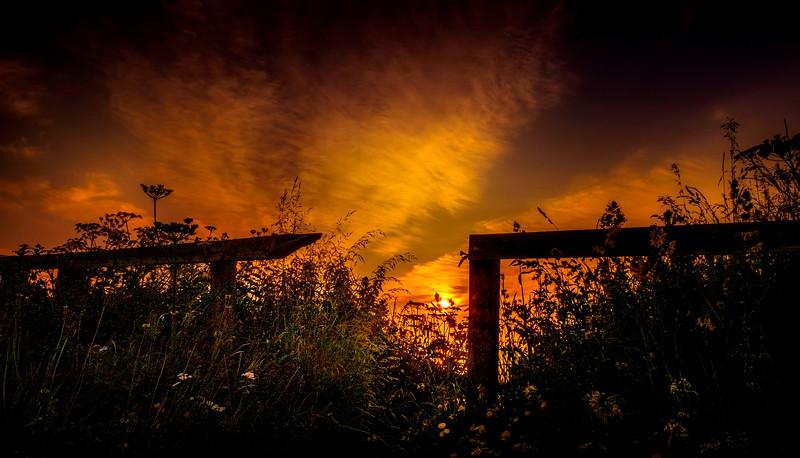 The Magic of Light-437.jpg