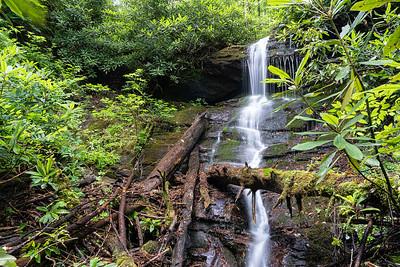 Buzzard Branch Corbin Creek